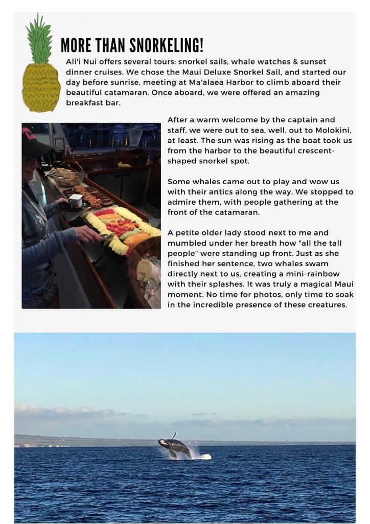 Alii Nui Maui_Snorkel_Whale_Watch_Maui